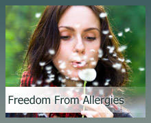 freedom from allergies